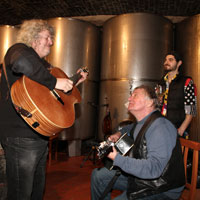 'The Kontrabant' music band in Vidmar wine cellar